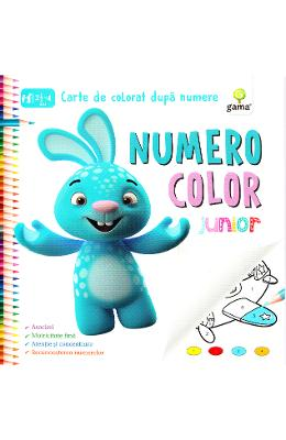 Numero Color Junior - Carte de colorat dupa numere