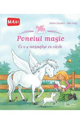 Poneiul magic - Sabine Streufert, Silke Voight