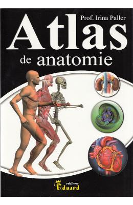Atlas de anatomie - Irina Paller in romana | Download pfd online | Pret la reducere