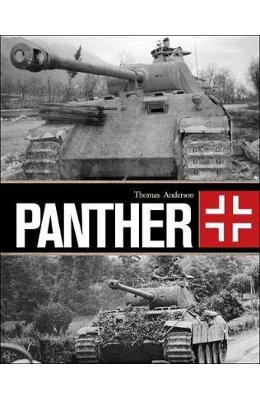 Panther - Thomas Anderson