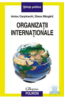 Organizatii internationale - Anton Carpinschi, Diana Margarit