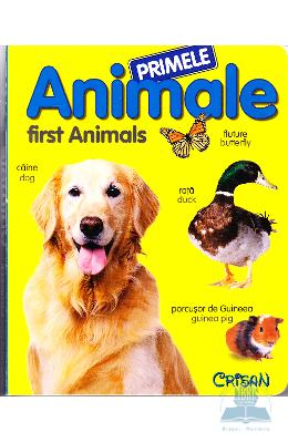 Primele animale - First animals