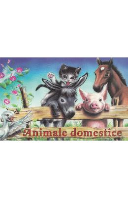 Animale domestice (pliant)