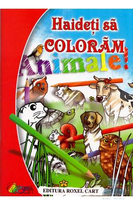 Haideti sa coloram animale!