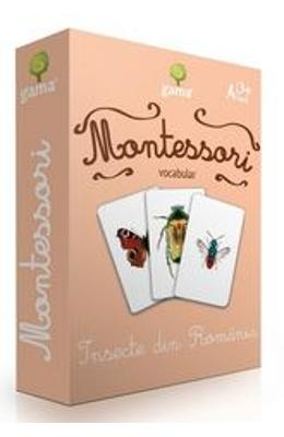 Montessori. Vocabular - Insecte din Romania