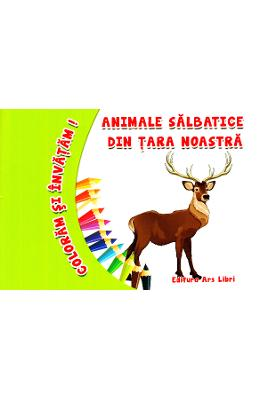 Animale salbatice din tara noastra - Coloram si invatam!