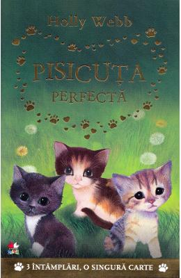 Pisicuta perfecta – Holly Webb de la libris.ro